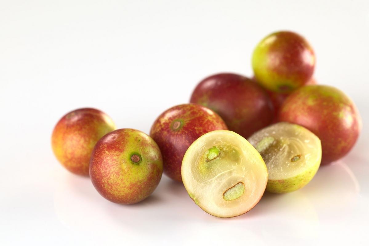 Le camu camu pour faire le plein de vitamine C naturelle